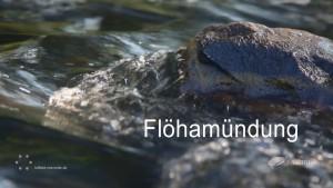 Flöhamündung Projekt Höselfilm und Luftbild Chemnitz